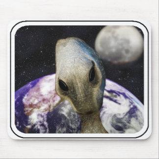 Destino: Tierra Tapetes De Ratones
