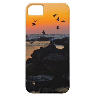 Destino tropical de la palma de la puesta del sol  iPhone 5 funda