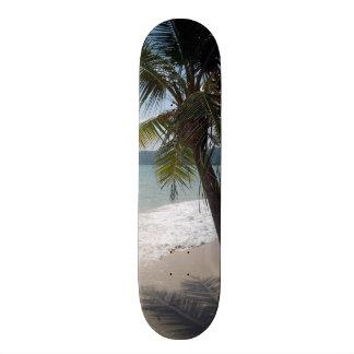 Destino tropical de la resaca de la arena de la tabla de skate