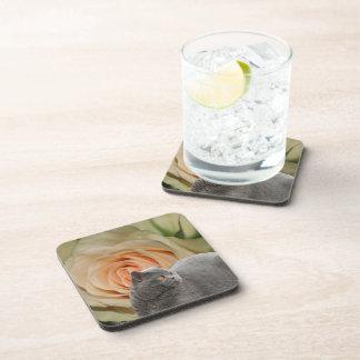 Destiny Gifts Beverage Coaster