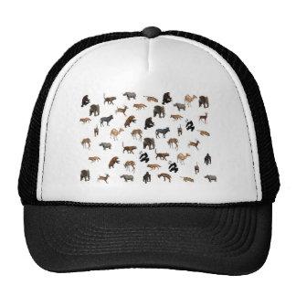 Destiny Gifts Trucker Hat