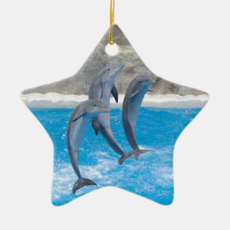 Destiny Gifts Double-Sided Star Ceramic Christmas Ornament