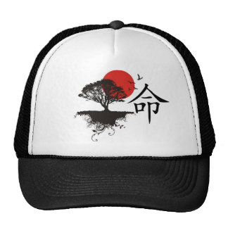 Destiny Mesh Hat