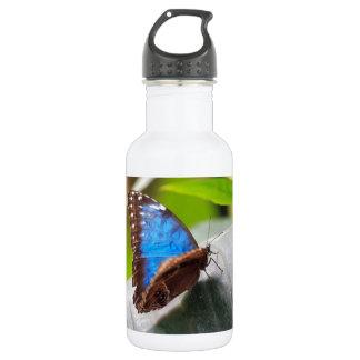 Destiny Stainless Steel Water Bottle