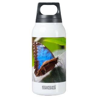 Destiny Thermos Water Bottle