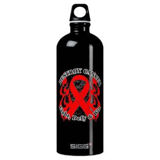 Destroy Blood Cancer Aluminum Water Bottle