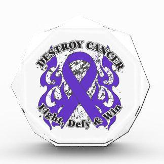 Destroy GIST Cancer Award