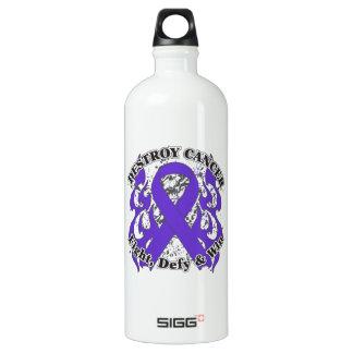 Destroy Pancreatic Cancer SIGG Traveler 1.0L Water Bottle