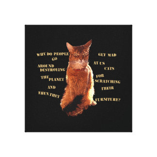 Destroy! Somali Cat Stretched Canvas