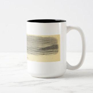 Destruction Island Mug