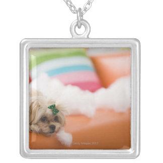 Destructive dog silver plated necklace