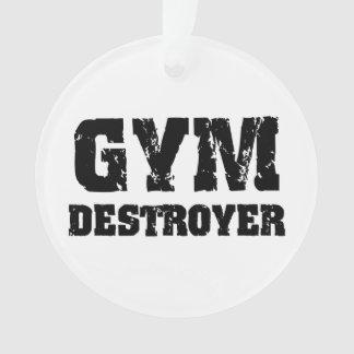 Destructor del gimnasio