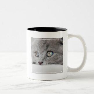 Detail Of A Cat Eyes Two-Tone Coffee Mug