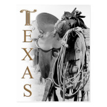 Detail of a Cowboy's Saddle in Texas Postcard