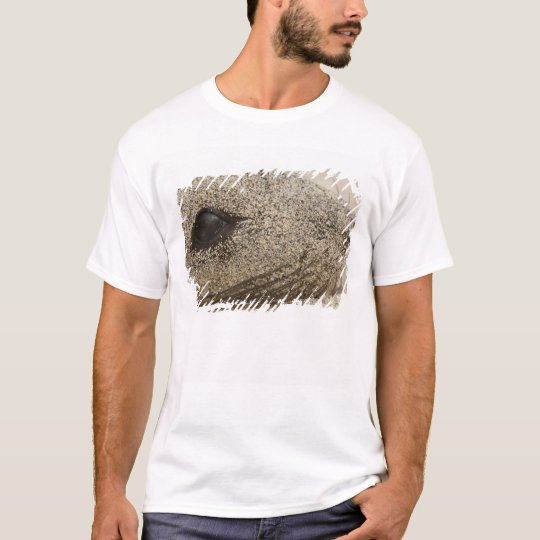 Detail of a Galapagos sealion Zalophus T-Shirt