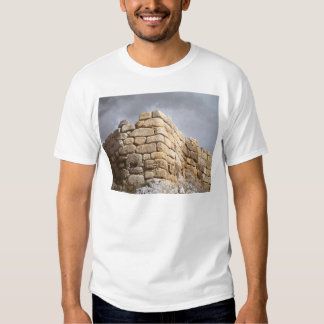 Detail of a stone wall t shirts