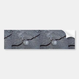 Detail of cracked lava, Bartolome Island, Galapago Bumper Sticker