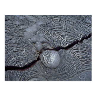 Detail of cracked lava, Bartolome Island, Galapago Postcard