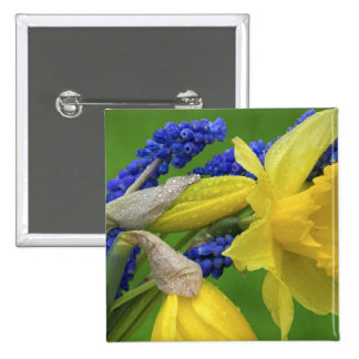 Detail of daffodil and hyacinth flowers. Credit Pinback Button