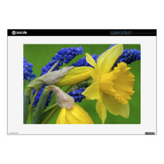 Detail of daffodil and hyacinth flowers. Credit Skin For Laptop
