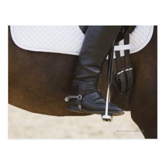 detail of female dressage rider on horse postcard