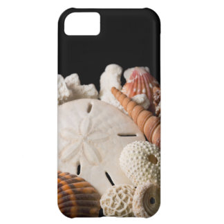 Detail Of Seashells From Around The World Case For iPhone 5C