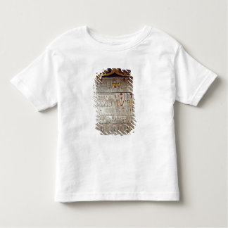 Detail of the Book of the Earth Toddler T-shirt