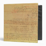 Detail of the Rhind Mathematical Papyrus 3 Ring Binders