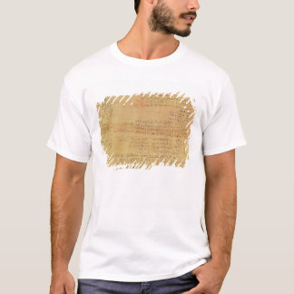 Detail of the Rhind Mathematical Papyrus T-Shirt