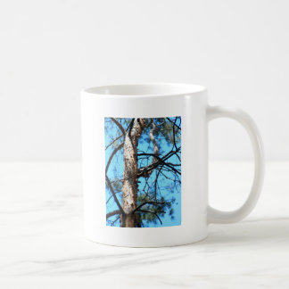 Detail of the trunk of a young pine tree classic white coffee mug