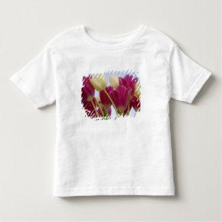 Detail of tulips. Credit as: Don Paulson / Toddler T-shirt