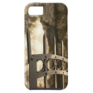 Detail of wrought iron gate in San Antonio iPhone 5 Cover