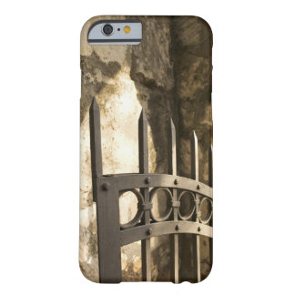 Detail of wrought iron gate in San Antonio Barely There iPhone 6 Case