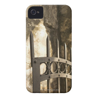 Detail of wrought iron gate in San Antonio iPhone 4 Cases