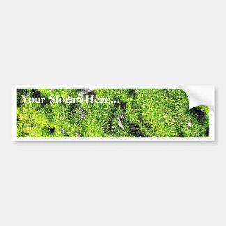 Detailed Photo Of Green Moss Car Bumper Sticker
