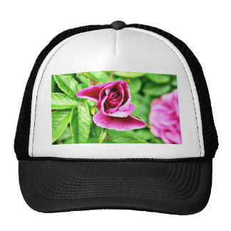 Detailed Picture Of Rose Flower Trucker Hat