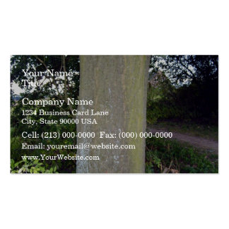 Detailed view of tree bark texture business card