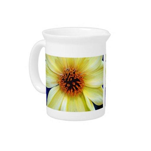 Detalle amarillo hermoso de la flor jarras de beber