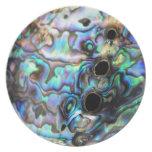 Detalle azul y verde del olmo de Paua de la cáscar Platos