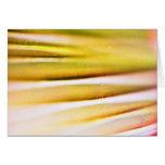 detalle de la fronda de la palma tarjetas