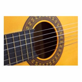 Detalle de la guitarra acústica fotoescultura vertical