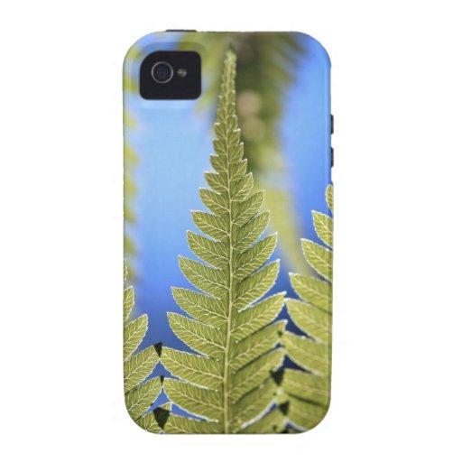 Detalle de la hoja del helecho de árbol Case-Mate iPhone 4 carcasa
