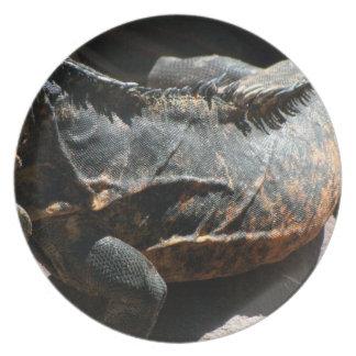 Detalle de la piel de la iguana plato de cena