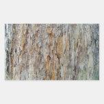 Detalle de la textura de la corteza de árbol rectangular pegatinas
