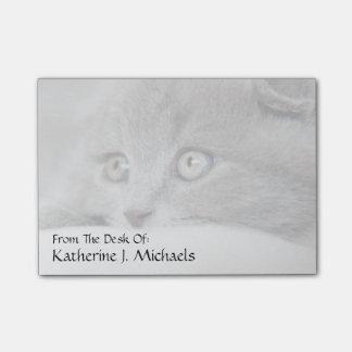 Detalle de los ojos de un gato post-it® notas