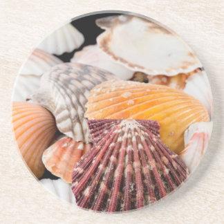 Detalle de los Seashells de alrededor del mundo 2 Posavasos Para Bebidas