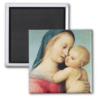 """Detalle de los """"tempos"""" Madonna, 1508 Imán Cuadrado"""