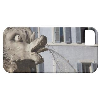 detalle de pescados en el Fontana de la Pantheon a iPhone 5 Case-Mate Protectores