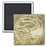 Detalle de pescados, las cuatro estaciones, de Veg Imán Cuadrado