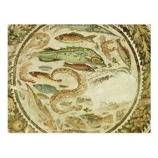 Detalle de pescados las cuatro estaciones de Veg Tarjetas Postales